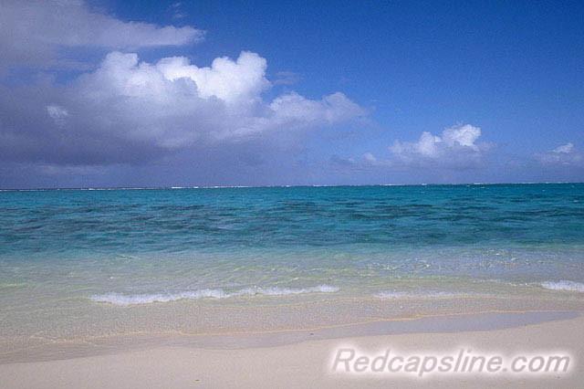 川や海の汚染を軽減するアミノ酸シャンプー